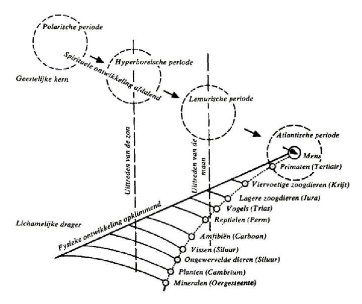 model Poppelbaum