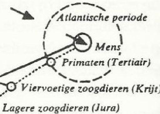 poppelbaum detail